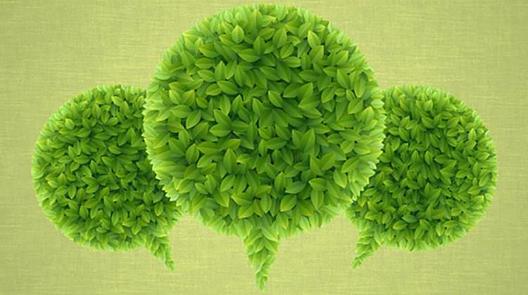 green startups
